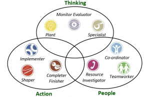 19_BLOG_Belbin_Team_Types_Venn